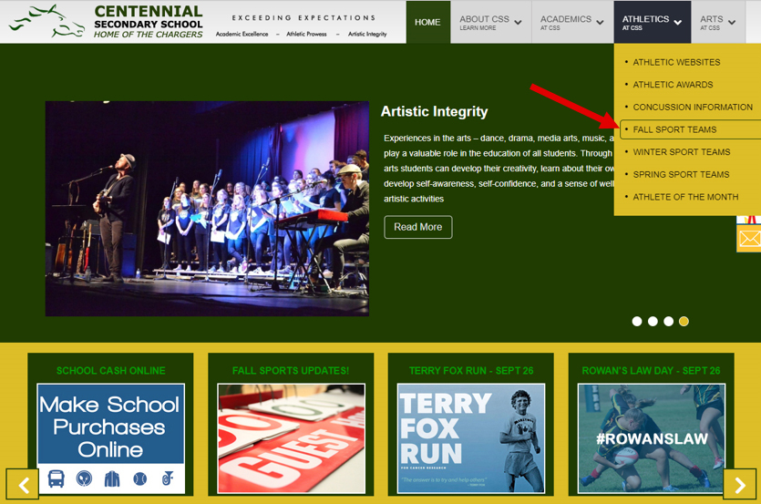 Fall Sports Site