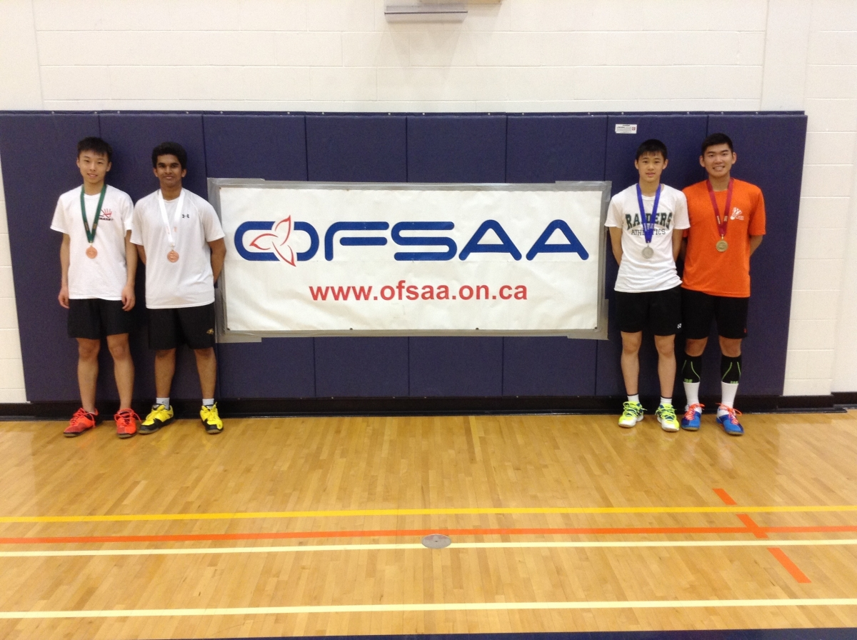 ofsaa bad